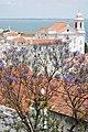 Igreja de Santo Estêvão em Lisboa.jpg