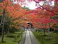 Ikkyuji Hondo2 DSCN1323 20101117.JPG