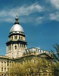 The Illinois House of Representatives convenes at the Illinois State Capitol in Springfield.