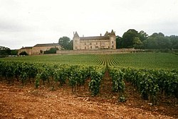 ImgVignoble de Rully et chateau de Rully.jpg