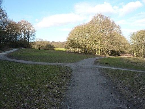 In Allestree Park, Derby - geograph.org.uk - 2249075