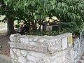 Ingresso giardino botanico Loreto Grande.jpg