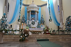 St. John the Baptist Cathedral, Ciudad Altamirano - Internal view