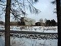 Irkutsk. Akademgorodok. February 2013 - panoramio (119).jpg