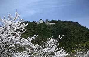 Iwakuni - Iwakuni Castle