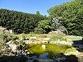 J. C. Raulston Arboretum - DSC06195.JPG