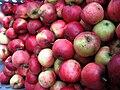Jablka (4).jpg