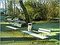 January Frost Botanic Garden Freiburg - Master Botany Photography 2014 - panoramio (1).jpg