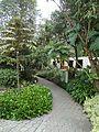 Jardín Botánico de Quito pic.01 Photography by David Adam Kess.jpg