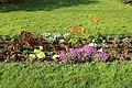 Jardin des plantes en fleurs à Paris le 3 avril 2017 - 23.jpg
