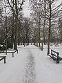 Jardin du Luxembourg neige 4.jpg