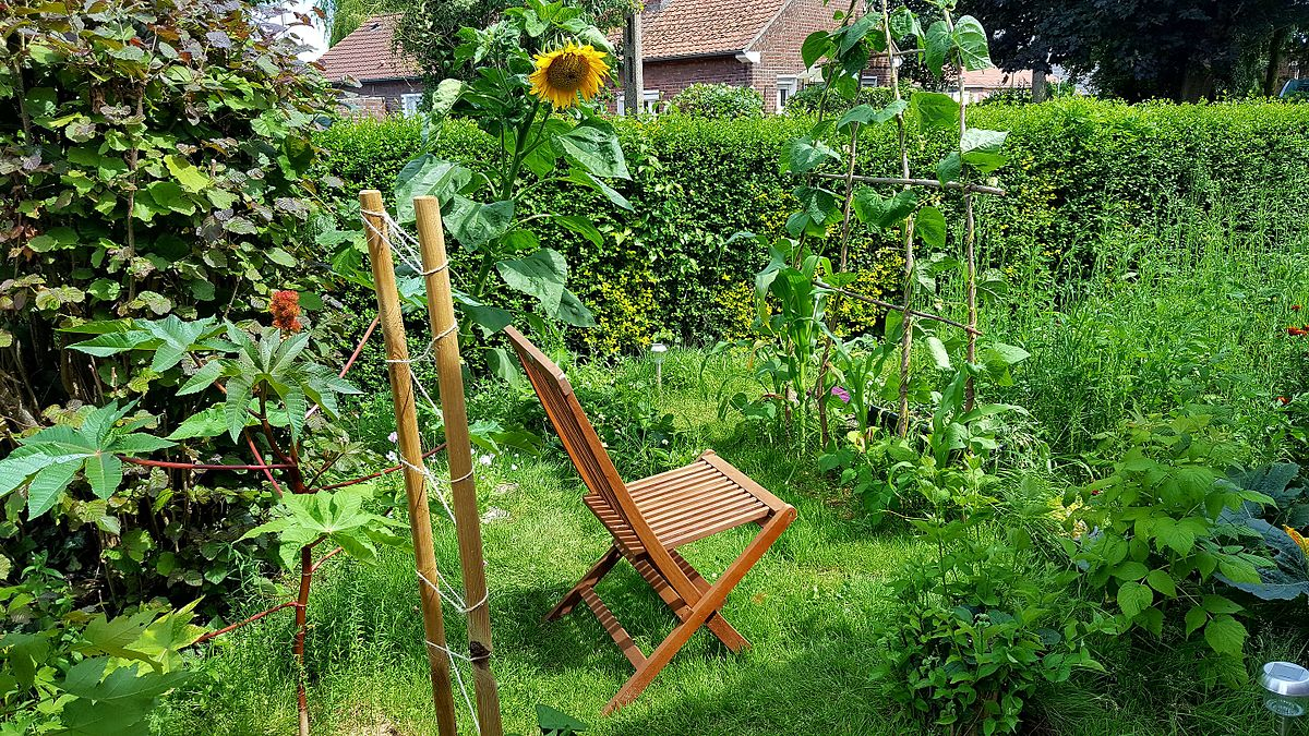 Permaculture wikip dia for Culture des jardins