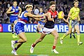 Jason Johannisen and Tomas Bugg contest.jpg