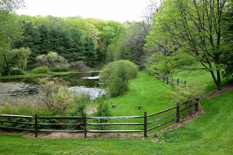 Jenkins Arboretum - DSC00677