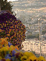 Jerusalem as a Background-2 (7175502790).jpg