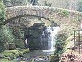 Jesmond Dene Mill 1171.JPG