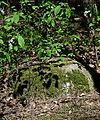 Jewish cemetery Garwolin IMGP3087.jpg