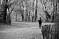Jogger... (95121258).jpg