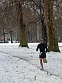 Jogging through Green Park - geograph.org.uk - 1148249.jpg