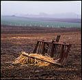Jordbruk (1).jpg
