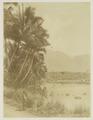 KITLV - 26966 - Kurkdjian - Soerabaja - Lake near Garut, West Java - circa 1900.tif