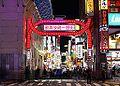 Kabukicho-Sinjyuku-Tokyo 2014.JPG