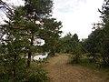 Kanivs'kyi district, Cherkas'ka oblast, Ukraine - panoramio (254).jpg