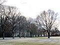 Kellaway Avenue - geograph.org.uk - 129754.jpg