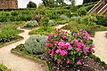 Kenilworth Castle Gardens (9819).jpg