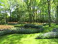Keukenhof Garden (37).JPG