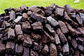 Kincasslagh Peninsula - Cut peat stacked to dry - geograph.org.uk - 1338545.jpg