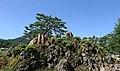 Korea Cheongwadae Sarangchae 10 (14276971631).jpg