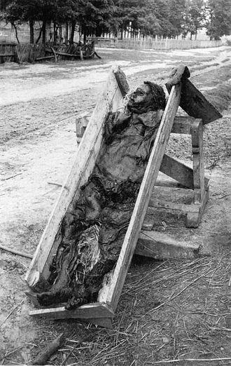 Bog body - 1903 excavation of the Kreepen Man