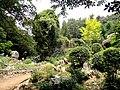 Kunming Botanical Garden - DSC02992.JPG