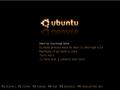KurdishUbuntuBootScreen.png
