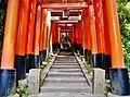 Kyoto Schrein Fushimi-Inari-taisha Torii 44.jpg