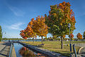 L'automne au Vieux-Port de Montréal (15462980142).jpg