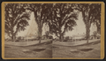 L.C. Spencer's farm buildings, Saybrook, Conn, from Robert N. Dennis collection of stereoscopic views.png