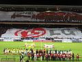 LG Cup 2011.jpg