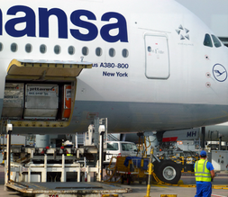 Loading hatch of the Lufthansa Airbus A380-800 New York at FRA Airport.png