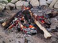 Lagerfeuer mit Glut Mai 2012.JPG