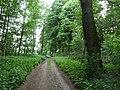 Land-Golf-Club Schloss Moyland PM18-06.jpg