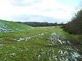 Land surrounding Conlig Reservoir - geograph.org.uk - 1721595.jpg
