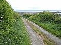 Lane to Ballyquintin Bay - geograph.org.uk - 456249.jpg