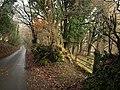 Lane to Shaugh Bridge - geograph.org.uk - 1625005.jpg