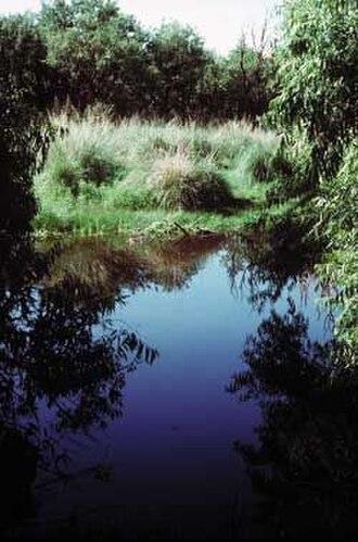 Las Cienegas National Conservation Area - Image: Las Cienegas NCA