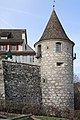 Laufen-Uhwiesen - Schloss 2013-01-31 15-11-37 (P7700) ShiftN.jpg