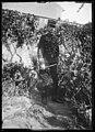 Le Lt Marie du 3e régiment d'artillerie, années 1890.jpg