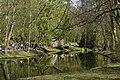 Le miroir au milieu des arbres (26244155501).jpg