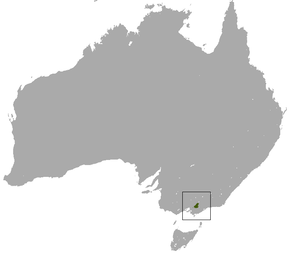 Description de l'image Leadbeater's Possum area.png.